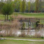GC Grado Teich mit Brücke